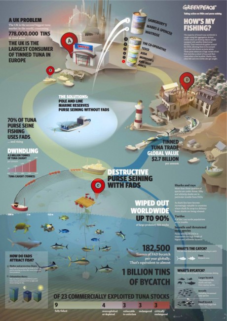 «Have a look at this great infographic to understand how ocean destruction can end up in your can». Greenpeace UK